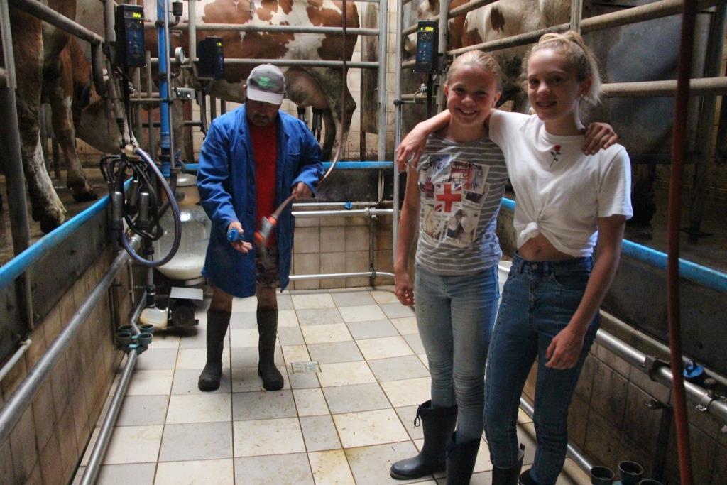 Die Mädels mit Bauer Martin beim Melken